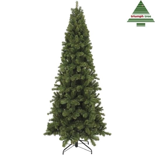 Triumph Tree KERSTBOOM PENCIL PINE