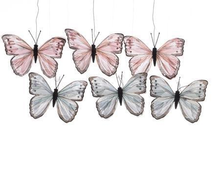 Decoris Vlinder