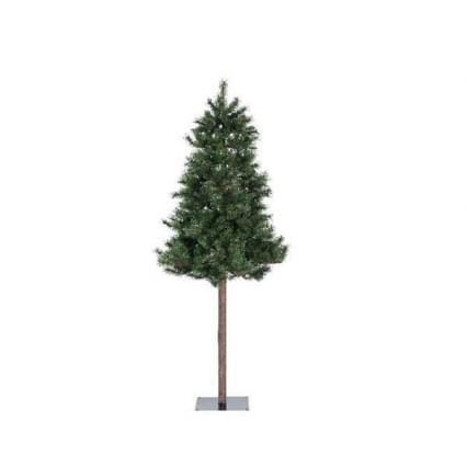 Decoris Montana spruce stam groen 180cm Kleuren