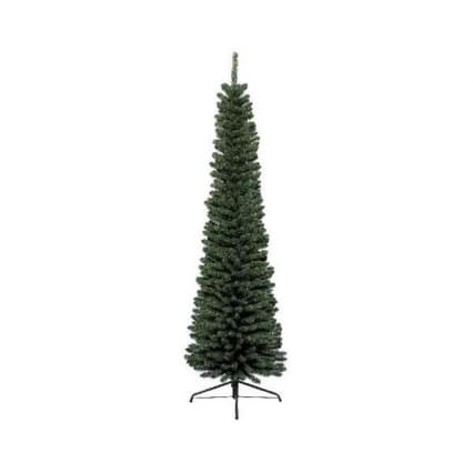 Everlands Pencil pine H300